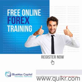 Forex online training for free