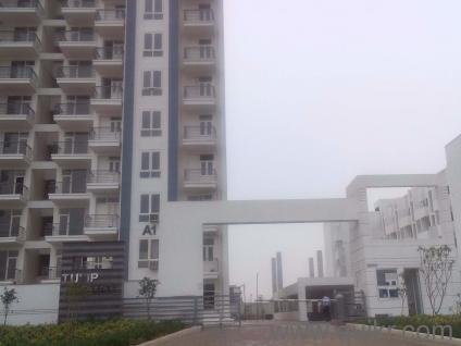 Studio Apartment Gandhinagar Infocity brilliant studio apartment ahmedabad tcs and decorating ideas